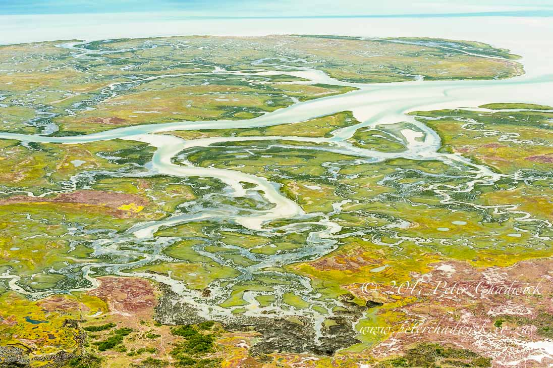Langebaan Salt Marsh_©PeterChadwick_AfricanConservationPhotographer