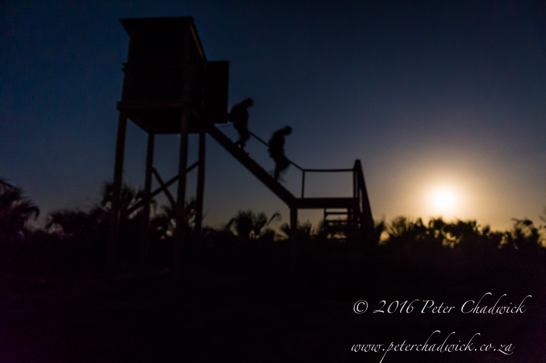 Anti Poaching Lookout Towers_©PeterChadwick_AfricanConservationPhotographer