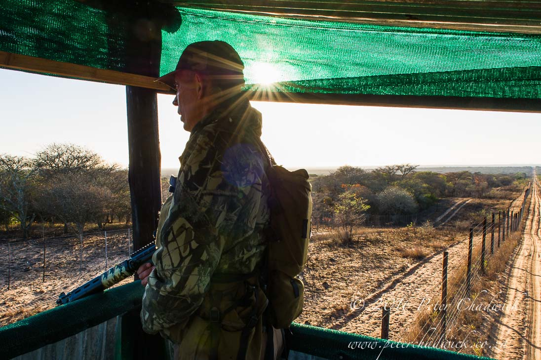 Rhino Protection Lookout Tower_©PeterChadwick_AfricanConservationPhotographer